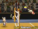 Bunnylimpincs Volleyball
