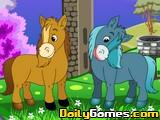 Darcy Pony Differences