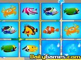 Fish Freedom