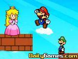 Mario Partner Adventure