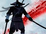Ninja Arashi