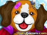 Pet Clinic