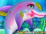 Pretty Dolphin Care